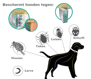 Anti Insecten Halsband