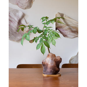 Special Special Edition Sunchoke Tubers Planter