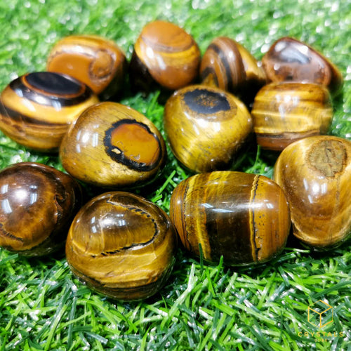 Tiger's Eye* Tumble