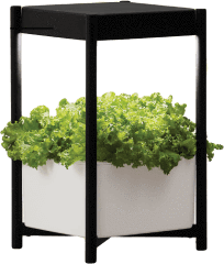 Miracle-Gro® Twelve Indoor™  Growing System