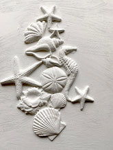 Load image into Gallery viewer, Sea Shells 6 x 10 IOD Decor Moulds