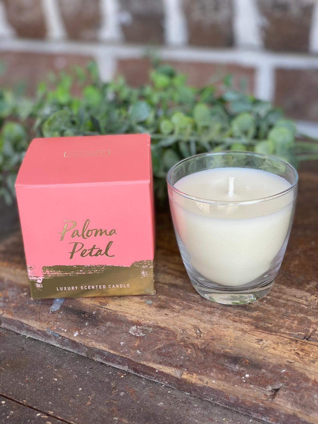 Boxed Illume Paloma Petal Candle