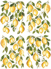 Load image into Gallery viewer, Lemon Drops IOD Transfer 12 x 16 Pad
