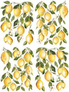 Lemon Drops IOD Transfer 12 x 16 Pad