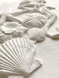 Sea Shells 6 x 10 IOD Decor Moulds