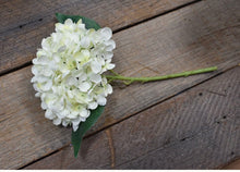 "Load image into Gallery viewer, 13"" Hydrangea Stems"