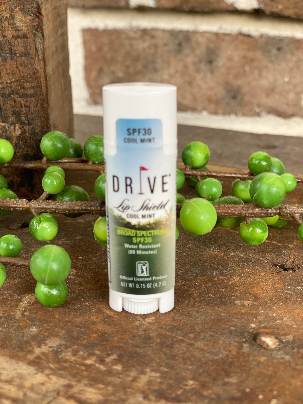 DRIVE Face Shield with Aloe Vera Sun Stick
