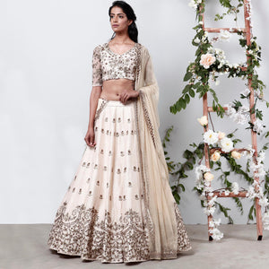 Embroidered Semi-stitched Party Wear Lehenga Choli