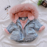 2019 Winter Baby Girl Denim Jacket Plus Velvet Real Fur Warm Toddler Girl Outerwear Coat - Tania's Online Closet