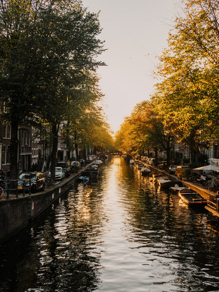 Out Of Bed: The Insider's Guide To Amsterdam