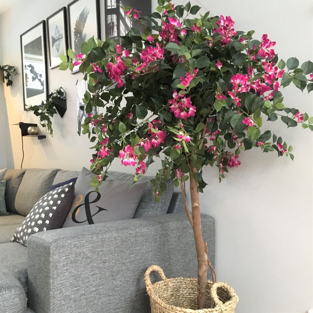 Bougainvillea - By Faux