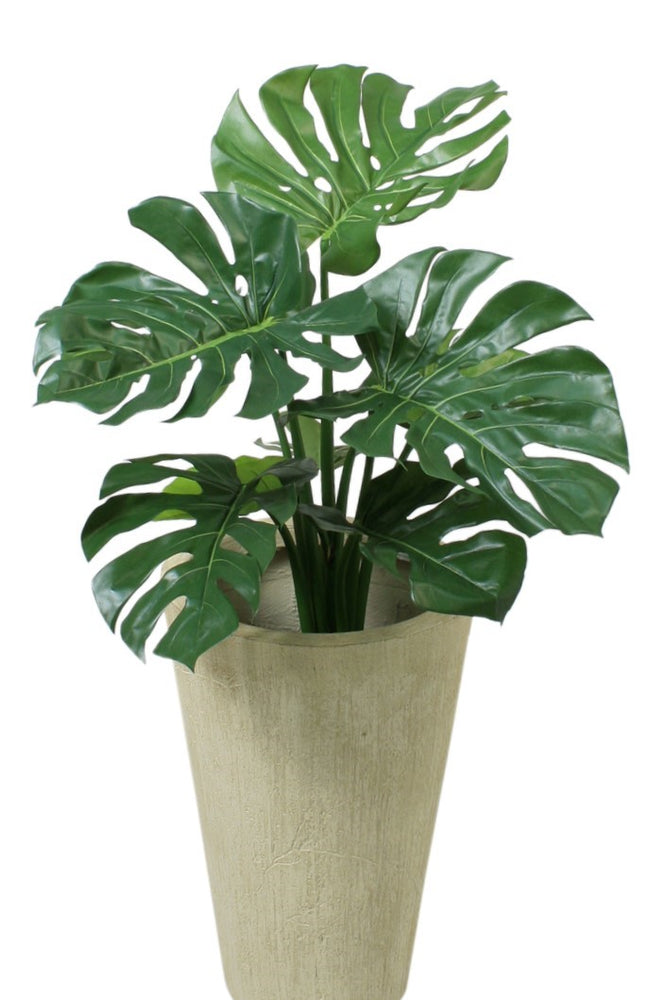 Monstera - By Faux