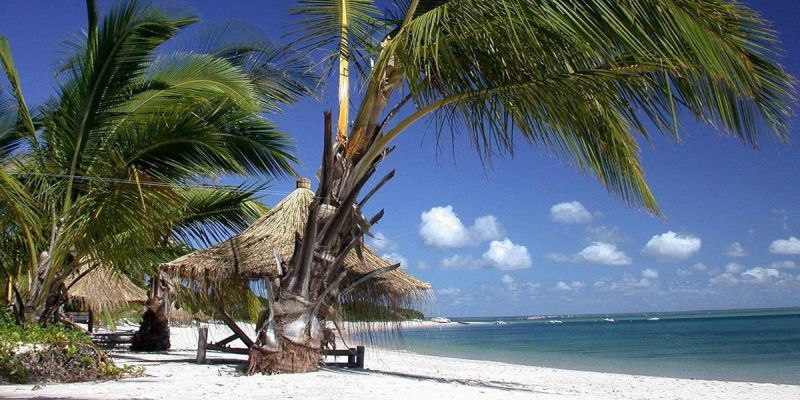 Bazaruto Archipelago - Mozambique - Sandy Beach and Palm Trees