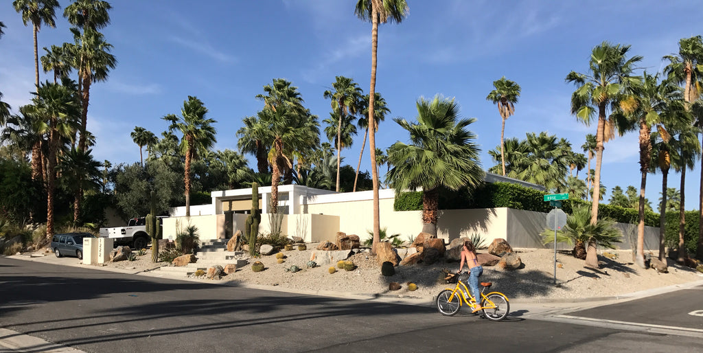 Biking through residential neighbourhoods in Palm Springs, California