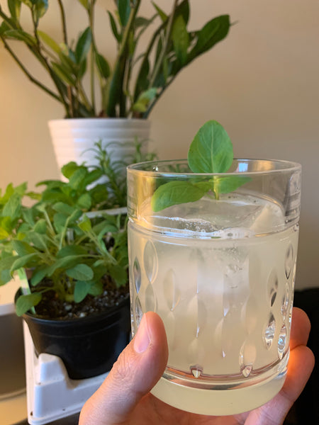 Gin Basil Smash Cocktail