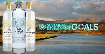 Dyfi Distillery & the UN Sustainable Development Goals