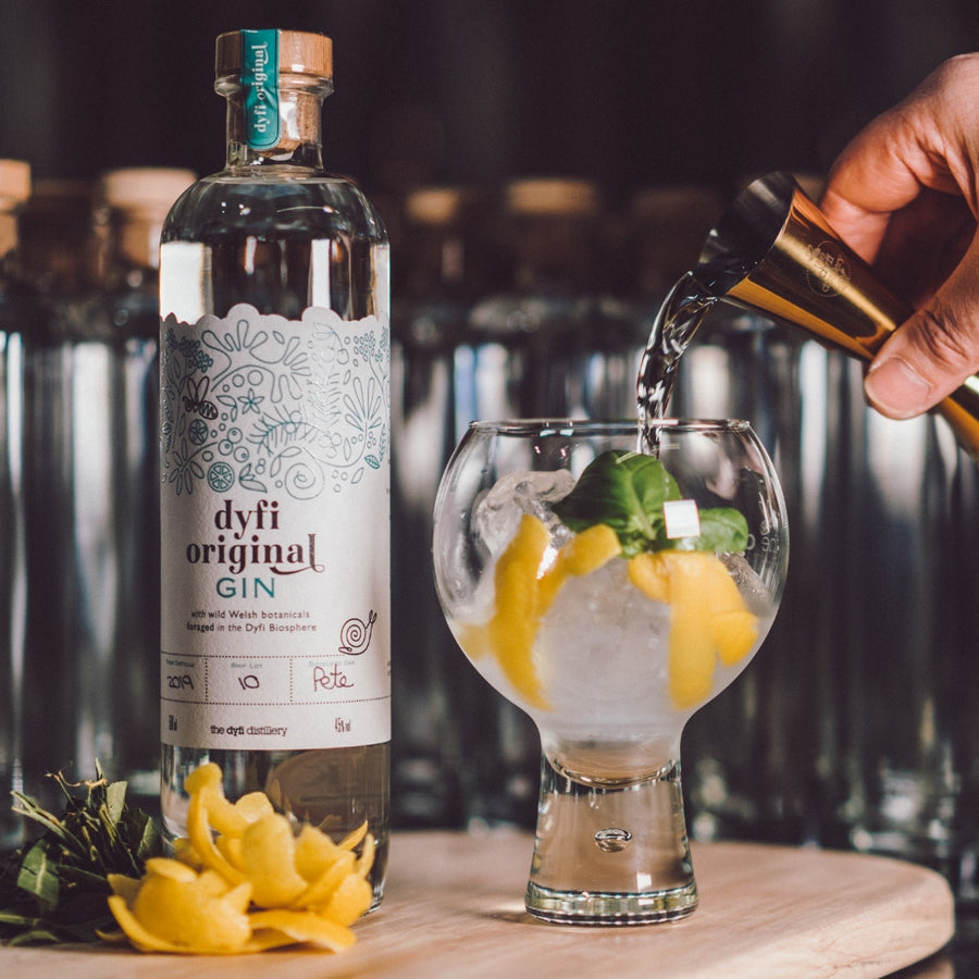 Dyfi Original Gin and Tonic