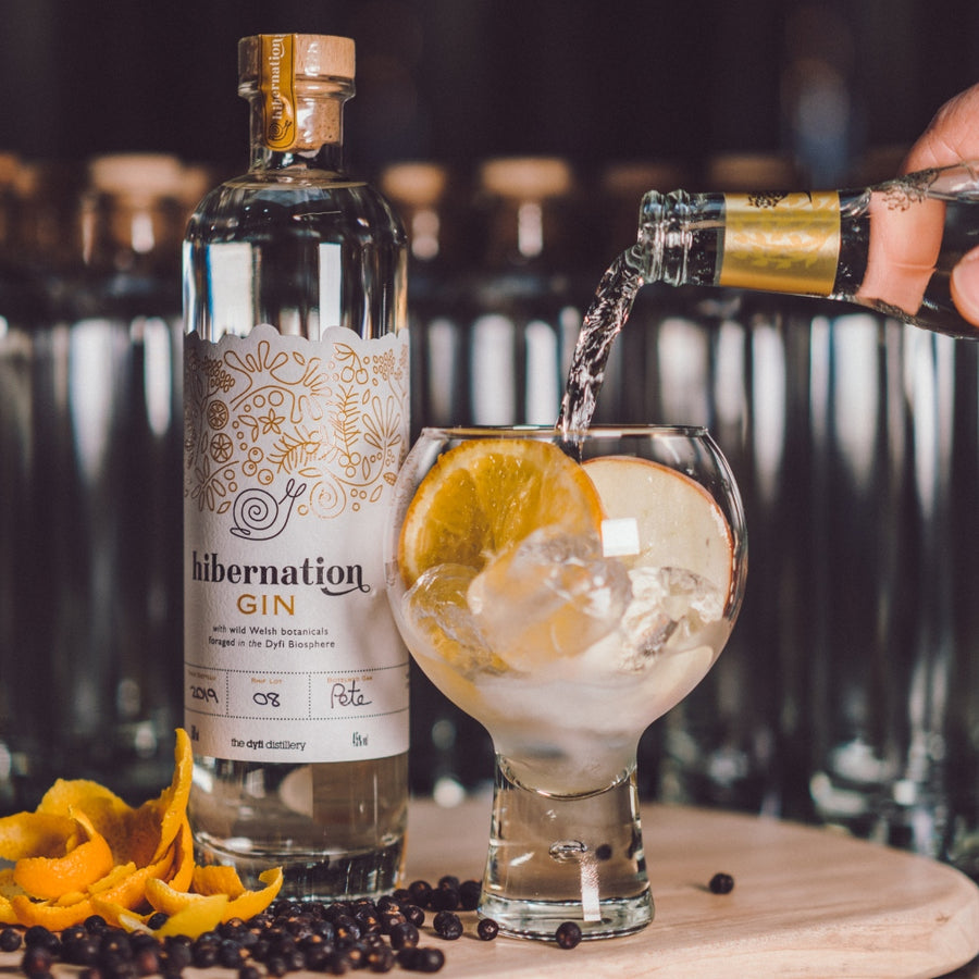 Hibernation Gin and Tonic