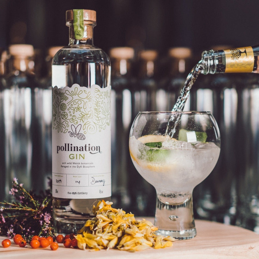 Pollination Gin and Tonic