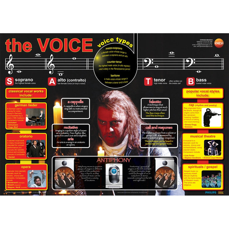 GNS-26 - Genesis Images The human voice - A1 wall poster Default title