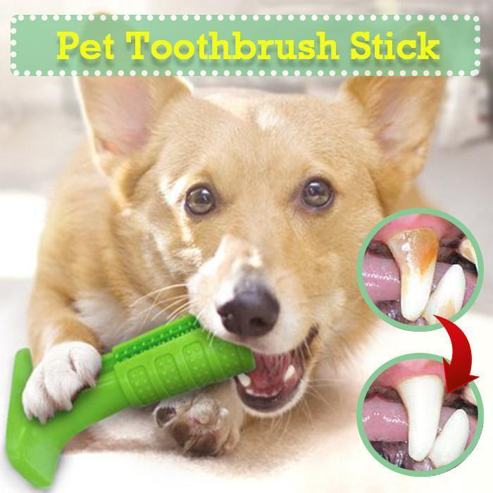 DOG TOOTHBRUSH STICK- HELPS PREVENT DOG GUM DISEASE