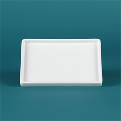 Small Rectangular Tray with Lip