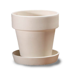 Large Flower Pot with Saucer