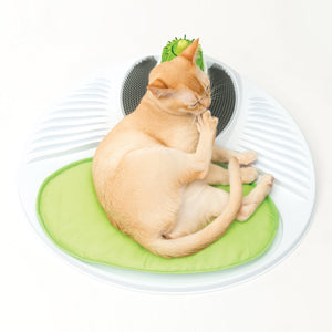 Cats Puzzle Massage Toys