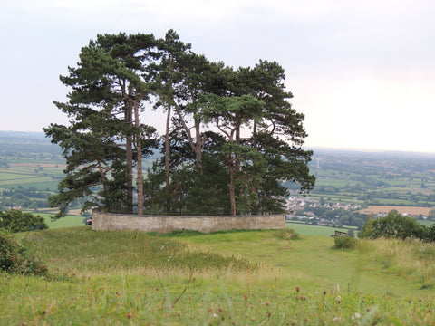 Wottons landmark: Wotton Hill