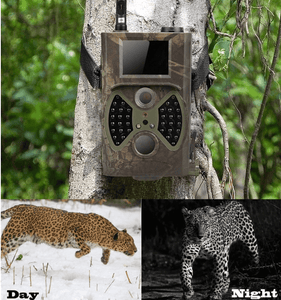 Professinal Trail Camera 2.0