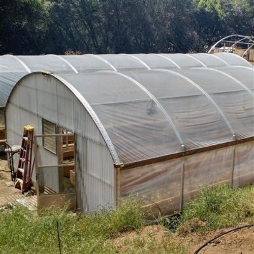 Local Greenhouse Producer