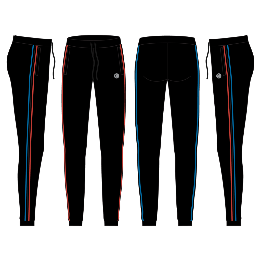 Women's Luxe Warmup Joggers With Speed Stripe - THEFITEXPO