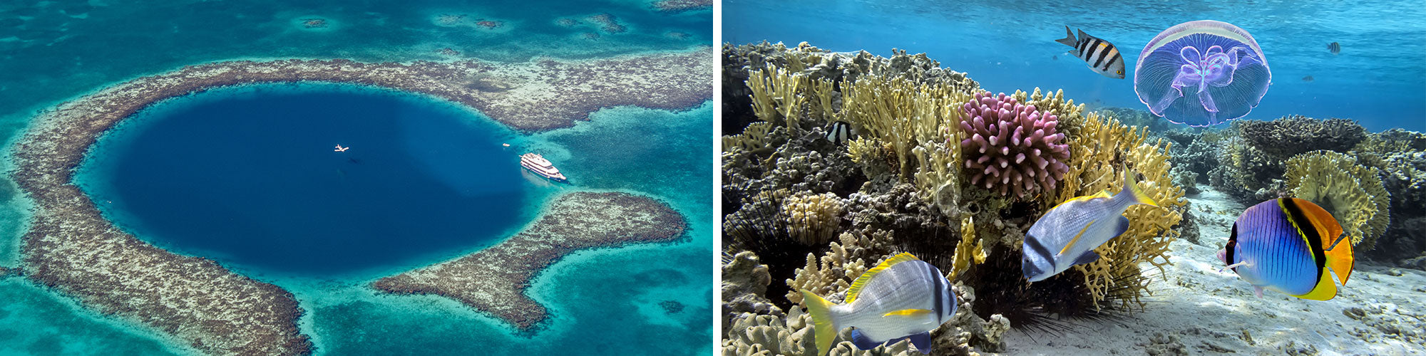 Fine Art Photography Prints of Belize Barrier Reef - Satellite Images of Earth - Point Two Design
