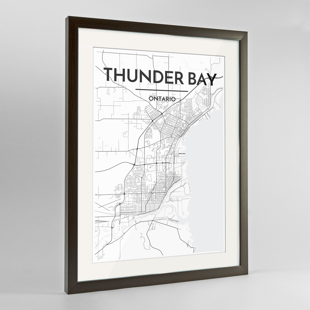 Thunder Bay City Map