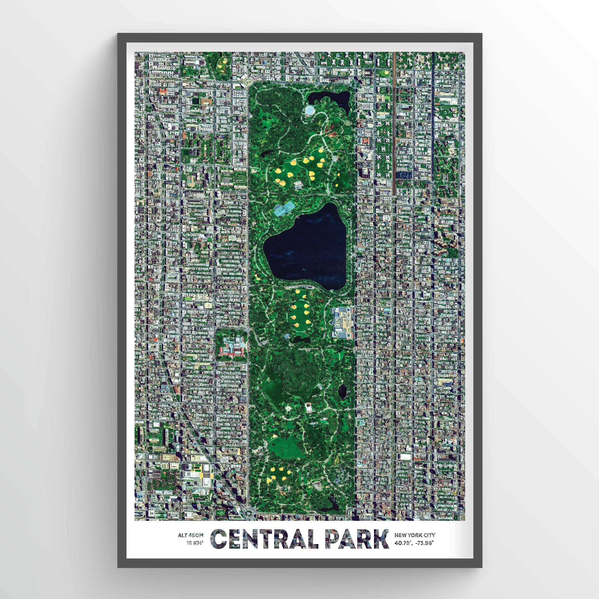 Central Park Earth Photography - Art Print - Point Two Design