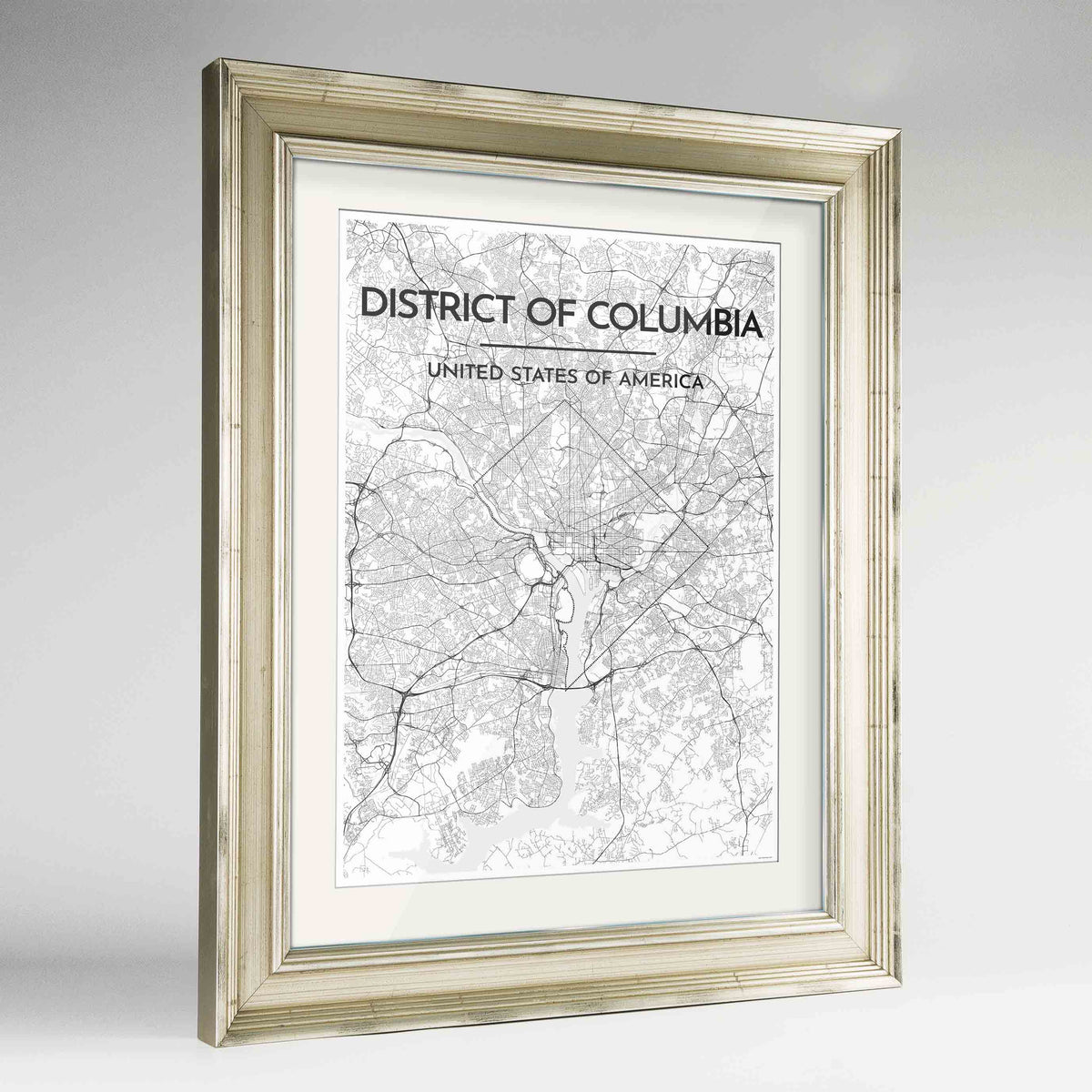 "Framed District of Columbia Map Art Print 24x36"" Champagne frame Point Two Design Group"