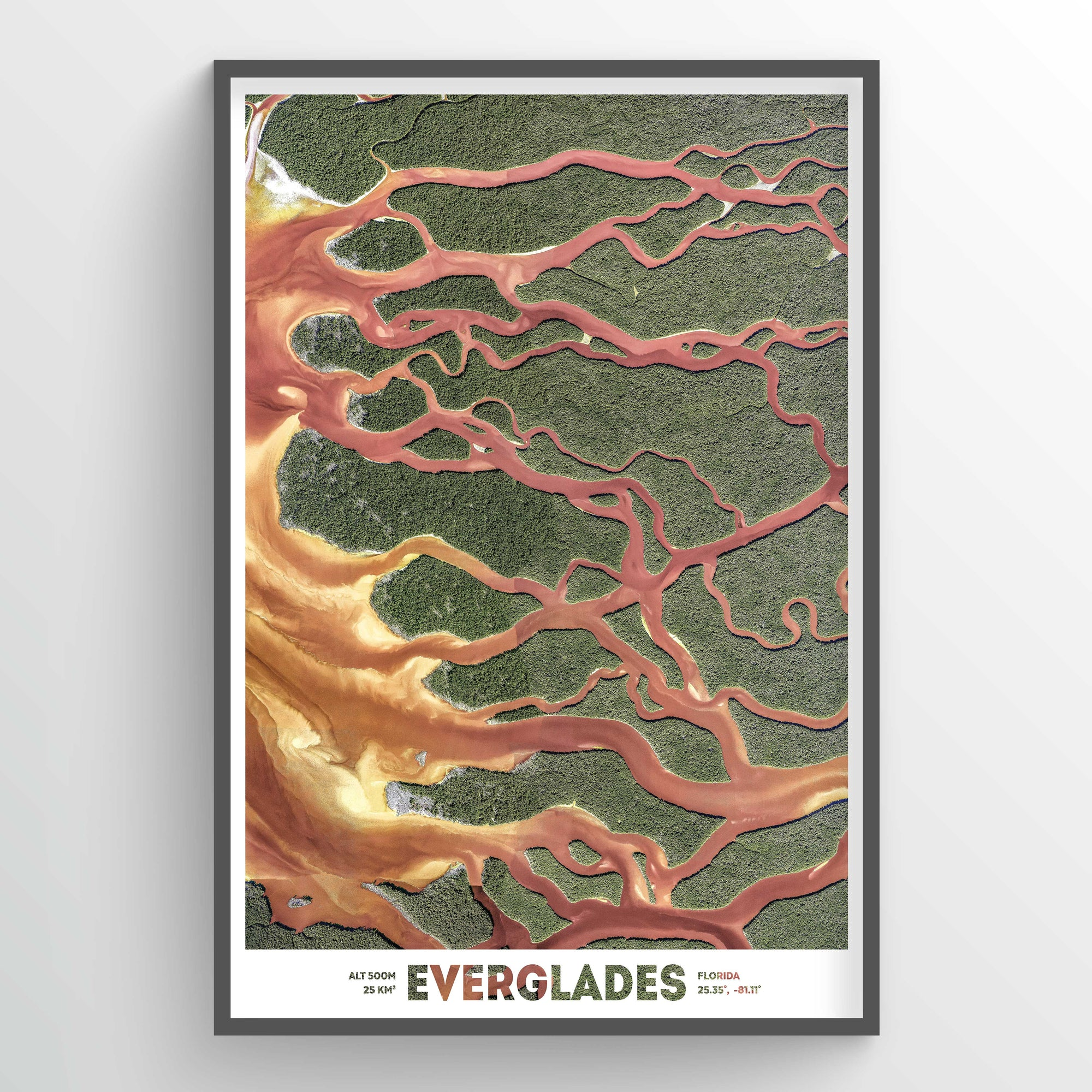Florida Everglades Earth Photography - Art Print - Point Two Design