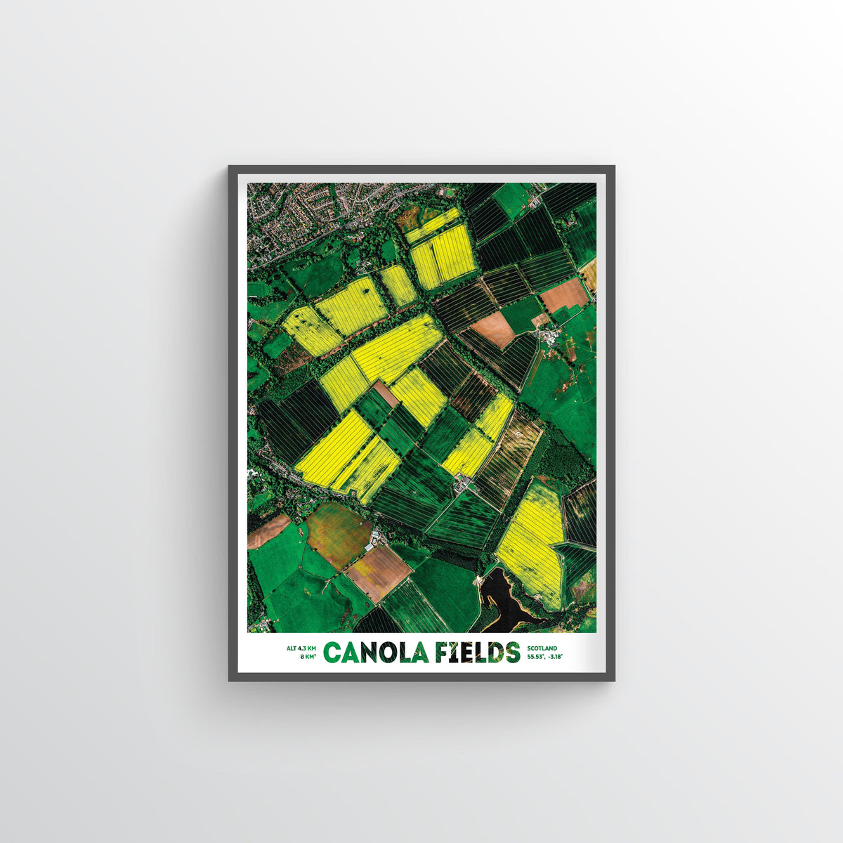 Canola Fields Earth Photography - Art Print - Point Two Design