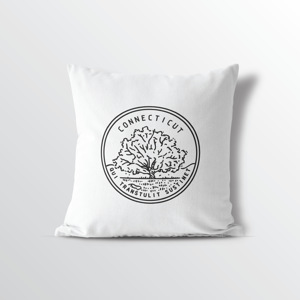 Connecticut State Crest Velveteen Throw Pillow - Point Two Design