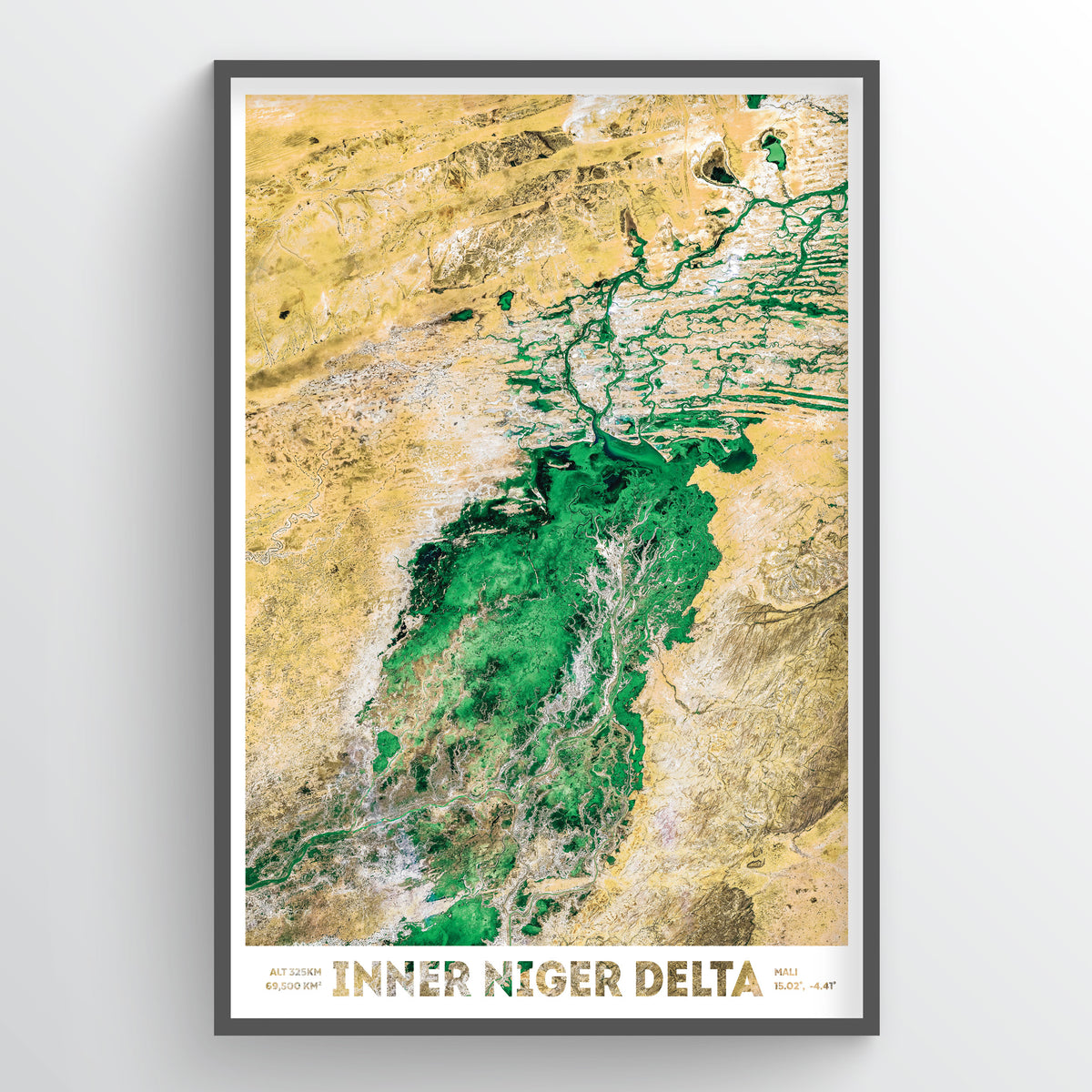 Inner Niger River Delta Earth Photography - Art Print