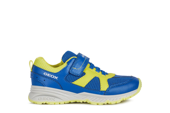 Geox Bernie Trainer Royal Blue/lime
