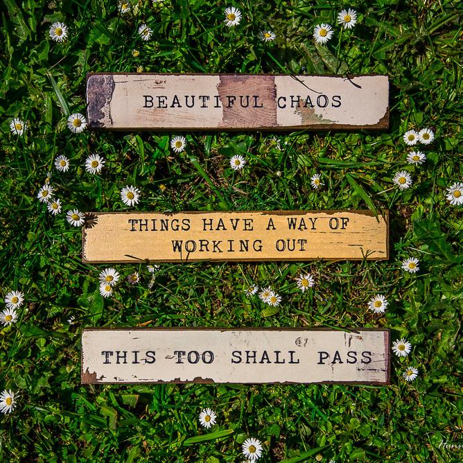 This Too Shall Pass  - Large Timber Bit