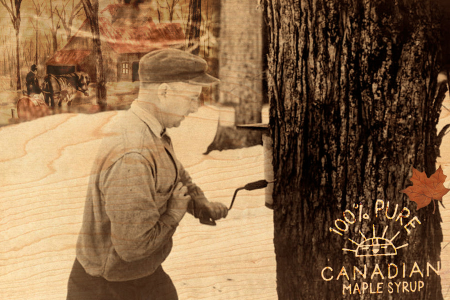 Maple Syrup - Wood Postcard