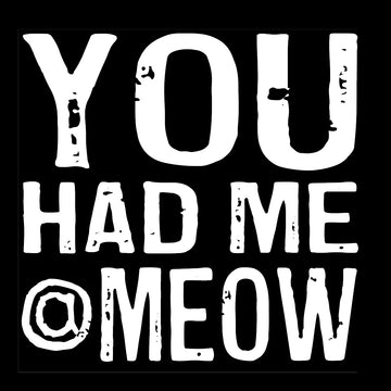 Bold Line Coaster & Magnet - You Had Me at Meow*