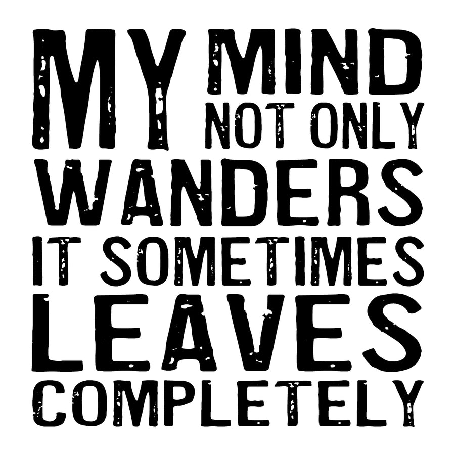 My Mind Not Only Wanders