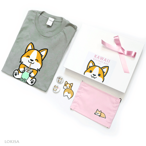 Kawaii Mystery Box - Corgi