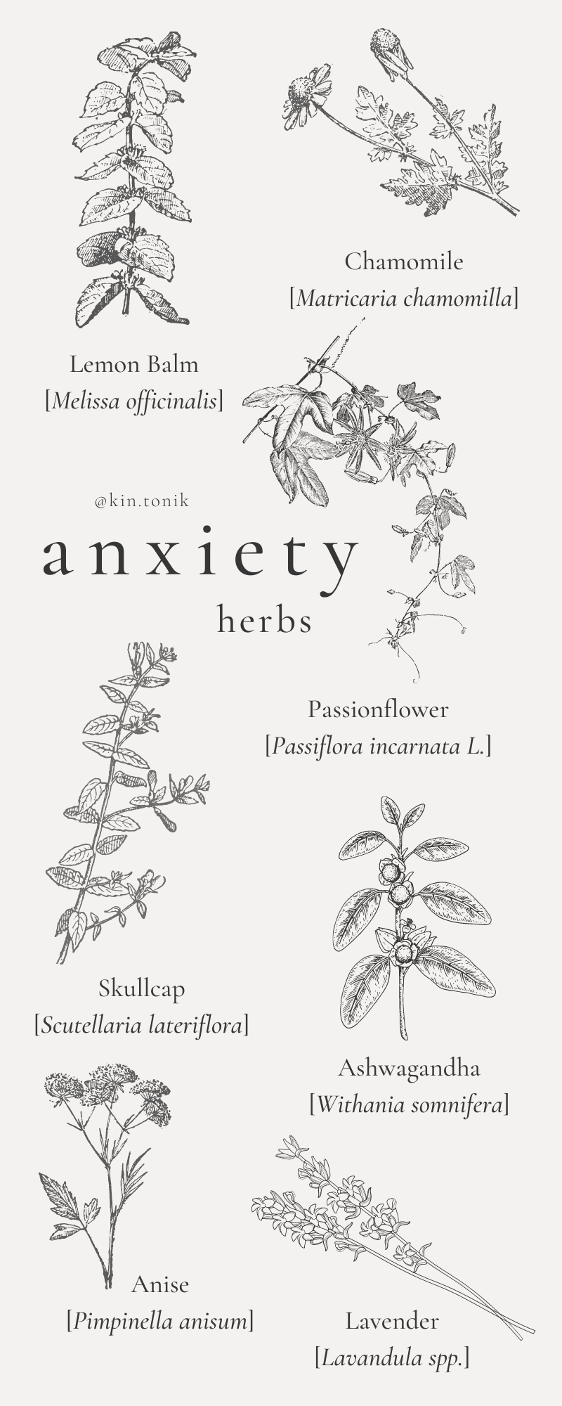 Herbs For The Anxious Mind