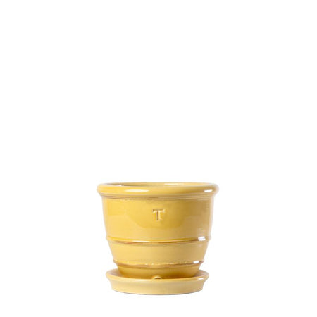 SET BOWL BORDE AROS 8″/1016; Amarillo Colonial