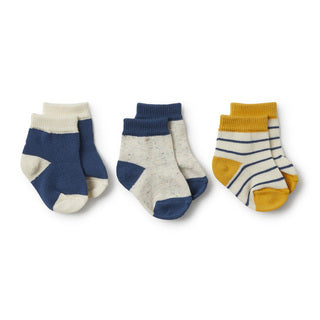 Wilson & Frenchy Baby Socks 3 Pack (Boys)