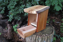 Bluebird Box, Rustic Bluebird Birdhouse, Elm Roof, Cherry Sides and Rustic Wormy Elm Front